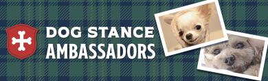 DOG STANCE AMBASSASORS