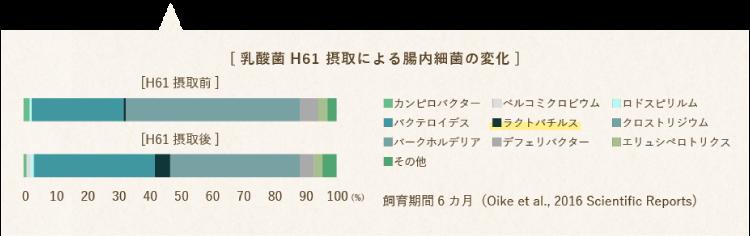 乳酸菌 H61 接種による腸内細菌の変化