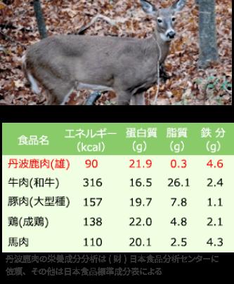 鹿肉と家畜肉との栄養価比較
