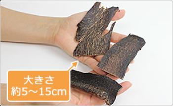 大きさ 約5~15cm