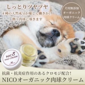 NICO オーガニック肉球クリーム