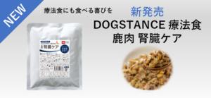 ドッグスタンス,DOGSTANCE