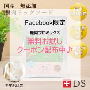 ドッグスタンス Facebook限定 キャンペーン