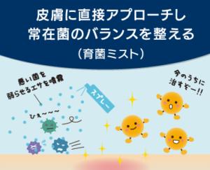 ドッグスタンス Eバイオ 菌画像